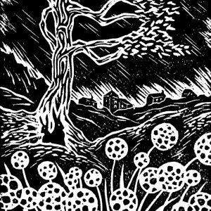 art-handprinted-woodcut-cornish-storm